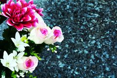 Pink flowers and roses, stones, romantic floral background. Pink flowers and white pink roses are shining under the sunrays. Romantic floral background and Stock Photography