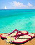 Pink and flowers Sandals on Dock Royalty Free Stock Images