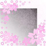 Pink flowers on scratches. Pink flowers on a gray gradient background with scratches Stock Photos