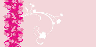Pink flowers. Seamless background for greeting wrapping Royalty Free Stock Photography