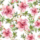 Pink flowers. Seamless floral repeated template. Hand painted watercolor on white background Stock Photography