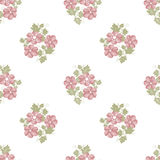 Pink flowers seamless pattern on white Royalty Free Stock Image