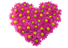 Pink flowers in a shape of a heart Royalty Free Stock Photo