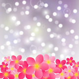 Pink flowers on shiny background Stock Photos