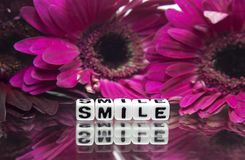 Pink flowers and smile text message. Smile message text with pink flowers in the background royalty free stock photo