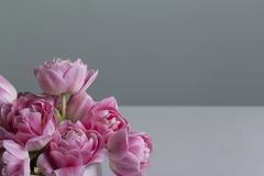 Pink flowers smooth bouquet on a solid grey background Stock Photography
