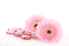 Pink flowers and spa stones Royalty Free Stock Photos