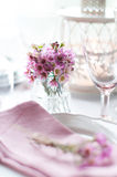 Pink flowers on a table Stock Photography