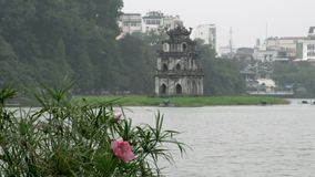 Pink flowers with Tháp Rùa (Turtle Tower) in Hoàn Kiếm Lake on the background stock video footage