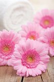 Pink flowers and towel for spa Stock Image