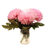 Pink flowers in vase Royalty Free Stock Photos