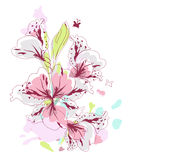 Pink Flowers in watercolor Stock Photos