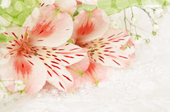 Pink flowers for wedding royalty free stock photos