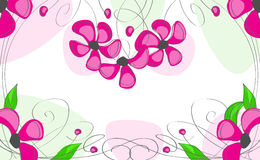 Pink flowers, on a white background Royalty Free Stock Photo