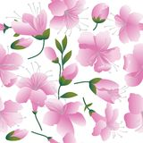 Pink flowers on white background. Seamless figure vector illustration