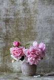 Pink Flowers on White Ceramic Vase Stock Images