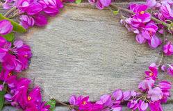 Pink flowers on wood Royalty Free Stock Photography