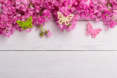 Pink flowers on wooden background Stock Images