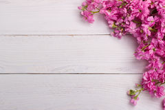 Pink flowers on wooden background Stock Photos