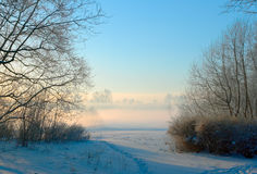 Pink fog. Fog over the winter river in one of parks of Saint-Petersburg Stock Photo