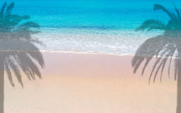 Pink foreshore with palms Stock Photography