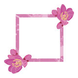 Pink frame decorated with flowers. Of Bergenia Royalty Free Stock Image