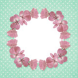 Pink frame with geranium flowers Royalty Free Stock Image