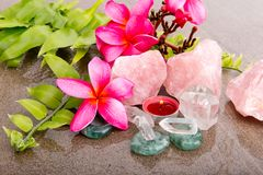 Pink Frangipani flowers and fern leaf with healing crystals Stock Photos