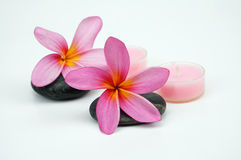Pink Frangipani flowers on pebble with pink candle isoalted on w Stock Images