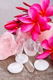 Pink Frangipani with Rose and Clear Quartz and Selenite healing. Crystals on wet slate background Stock Images