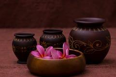 Pink frangipani. With spa concept Stock Photos