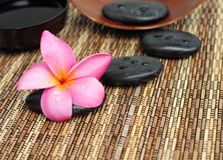 Pink frangipani and therapy stones Royalty Free Stock Photography