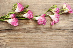 Pink freesia flowers on wood Royalty Free Stock Photography