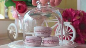 Pink french macarons under the glass on the wooden boards, soft focus background. Sweet desert In the cafe. Pink french macarons under the glass on the wooden stock footage