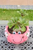 pink frog tree pot Stock Photo
