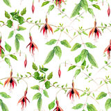 Pink fuchsia flowers. Repeating floral pattern. Water color Royalty Free Stock Photos