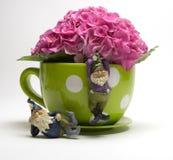 Pink Fushia Hydrangeas. In a yellow polka dot coffee mug with garden gnomes Stock Image