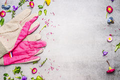 Pink garden gloves with flowers, leaves and plants on concrete background, top view, frame. Royalty Free Stock Photos