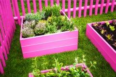 Pink garden Stock Photo