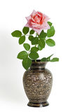 Pink garden rose in black metal vase Stock Photography