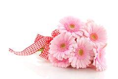 Pink Gerber bouquet Stock Photo