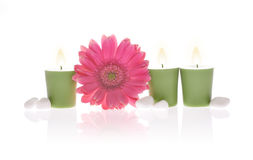 Pink Gerbera and Aromatic Candles. A pink gerbera, three aromatic green candles and some white river stones with reflection on white background Stock Photos