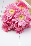 Pink gerbera in basket with pink background Royalty Free Stock Photo
