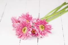 Pink gerbera bunch on white wood Stock Image