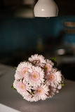 Pink gerbera daisies in the bouquet Stock Images