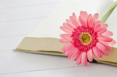 Pink Gerbera daisy flower at opened book Royalty Free Stock Photo