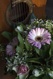 Pink gerbera with green leaves and classical guitar Stock Images