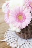 Pink gerberas Stock Photos