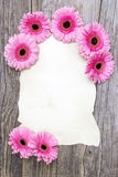 Pink gerberas and empty sheet Royalty Free Stock Photo