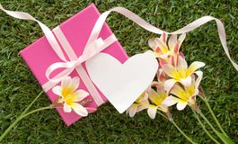 Pink gift box with a bow, blank note for text and flowers. Pink gift box with a bow, blank note for text and flowers, on green grass Royalty Free Stock Photos